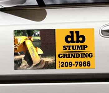 DB Stump Grinding