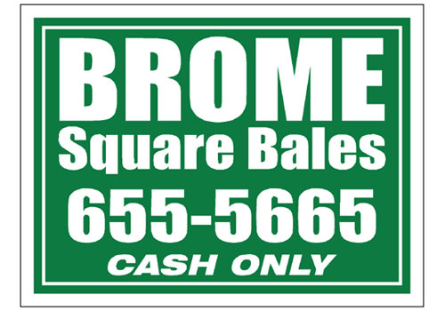 Brome Hay